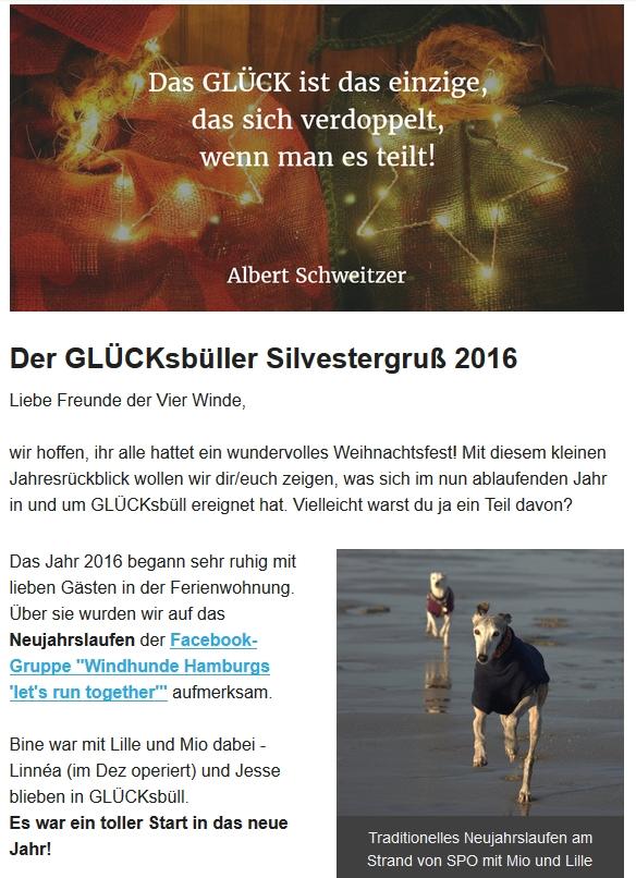 gluecksbuell-_-silvestergruss